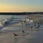 Anna Maria Island beachfront