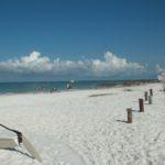 Sarasota FL Real Estate